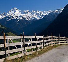 Alpine Fence by Walter Quirtmair