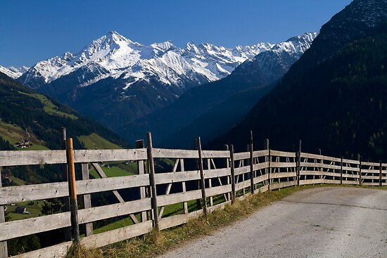 Alpine Fence by Walter Quirtmair