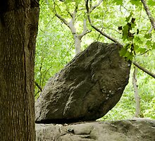 ZEN  ROCK by Gilad