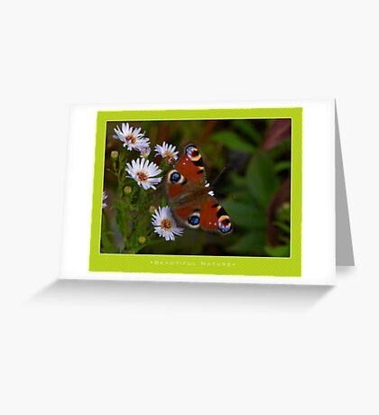 Macro: Beautiful  Nature - 6 Greeting Card