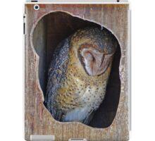 Sleeping Owl iPad Case/Skin