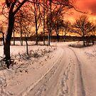 Christmas at the crossroads by Patrycja Makowska