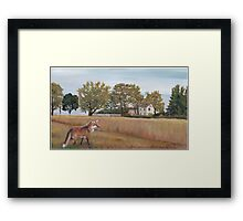 Fox on the Battlefield Framed Print