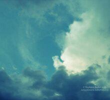 Look Up by Stephanie Rachel Seely
