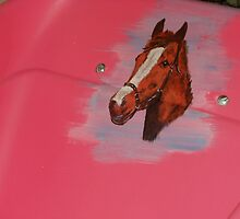 The Pink Wheelbarrow 2 by oulgundog