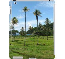 a sprawling Nicaragua landscape iPad Case/Skin