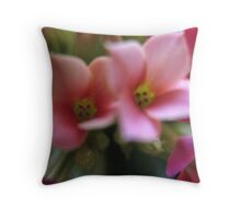 Two for the price of one sweetness Throw Pillow