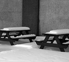 Picnic Tables by rdshaw