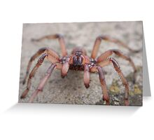 Trap Door Spider Greeting Card
