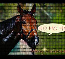 HORSE WEAVE HO HO HO - MERRY CHRISTMAS by Cheryl Hall