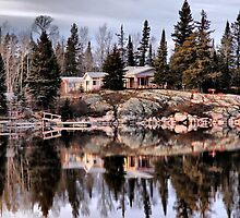 Cottage on Eleanor Lake by Vickie Emms