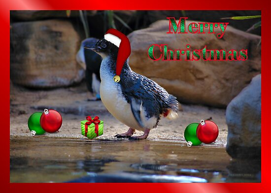 MERRY CHRISTMAS - FAIRY PENGUIN by Cheryl Hall