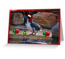 MERRY CHRISTMAS - FAIRY PENGUIN Greeting Card