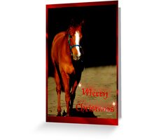 BEAUTIFUL HORSE - MERRY CHRISTMAS CARD Greeting Card