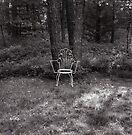 Bernies Chair by Barbara Wyeth