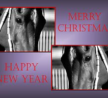 TWIN HORSE FACE PROFILE CHRISTMAS CARD - MERRY CHRISTMAS & HAPPY NEW YEAR by Cheryl Hall