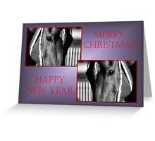 TWIN HORSE FACE PROFILE CHRISTMAS CARD - MERRY CHRISTMAS & HAPPY NEW YEAR Greeting Card