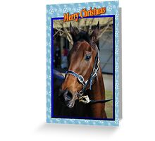 HORSE CHRISTMAS CARD - MERRY CHRISTMAS Greeting Card