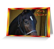 HORSE FACE - MERRY CHRISTMAS - COLOR Greeting Card