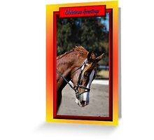 HORSE FACE PROFILE CHRISTMAS CARD - CHRISTMAS GREETINGS CARD Greeting Card