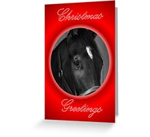 HORSE FACE BLACK & WHITE CHRISTMAS CARD - CHRISTMAS GREETINGS Greeting Card