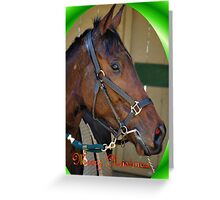 HORSE CHRISTMAS CARD GREEN - MERRY CHRISTMAS Greeting Card