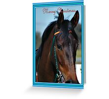 HORSE LOVER CHRISTMAS CARD BLUE - MERRY CHRISTMAS Greeting Card