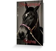 HORSE BLACK AND WHITE - MERRY CHRISTMAS CARD Greeting Card