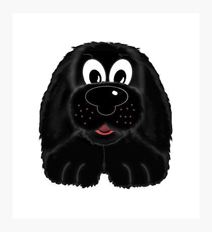 Children's Black Fuzzy Puppy Dog Photographic Print