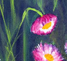 Paper Daisies - Acrylic on canvas - closeup01 by Adriel Knowling
