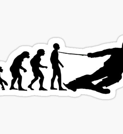 Skier Evolution Sticker