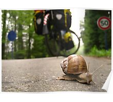 March: A snail's pace - Champagne, France Poster