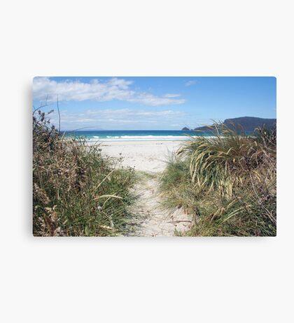 Beautiful beach, Bruny Island Canvas Print