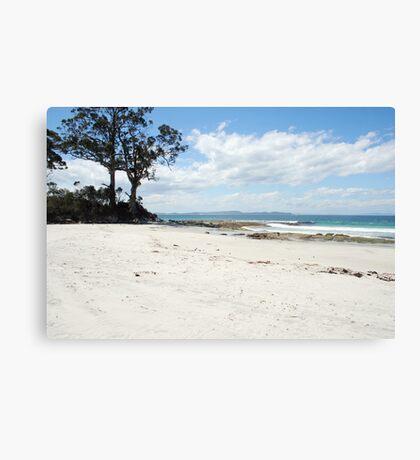 Beautiful secluded beach, Bruny Island Canvas Print