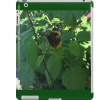 Ragged Butterfly iPad Case/Skin