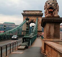 Crossing the Chain bridge II by zumi