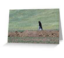 an unbelievable Iran landscape Greeting Card