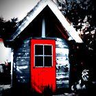 The red door by vlamas