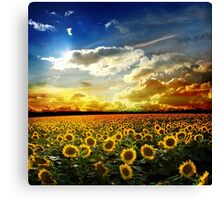 OVer View Canvas Print