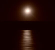 Moonlight over Kingfisher Bay (Fraser Island) by marieangel