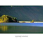 Silence by Erwin G. Kotzab