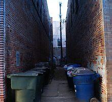 Urban Excess II by florene welebny
