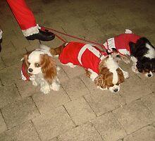 Santas Little Helpers..... by marieangel