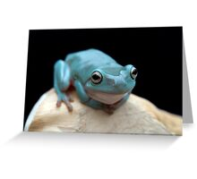 The happy frog Greeting Card