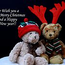 A Beary Merry Christmas! by Justine Devereux-Old