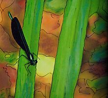 Mixed Media Woodstock Dragonfly  by andymars