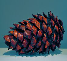 pinecone by cetrone