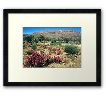 a vast Australia landscape Framed Print