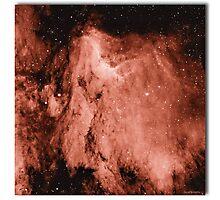 Pelican nébula Photographic Print