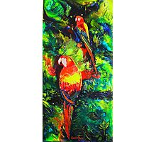 Midnight Parrot Symphony Photographic Print